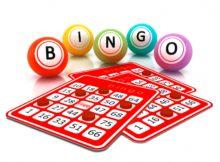 bingo cardz