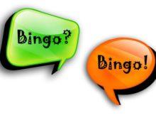 Bingo Chat